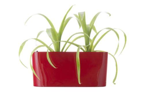 Samozavlažovací květináč G21 Combi mini červený 40 cm 6392501